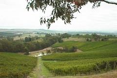 c-stream-valley-good